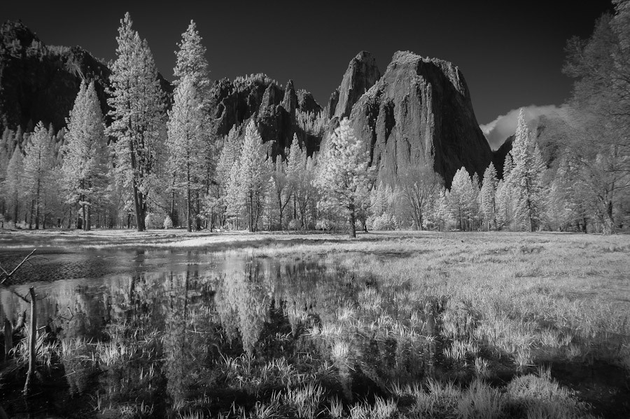 Meadow in Infra Red, Yosemite National Park